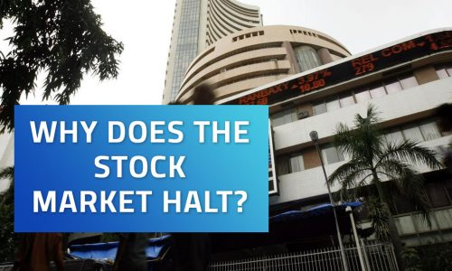 Why does the Stock Market Halt During Session?